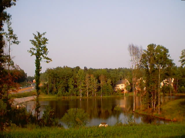 The Lake opposite the plot